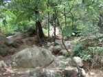 Mountain Climbing in Mount Bukhan, Seoul